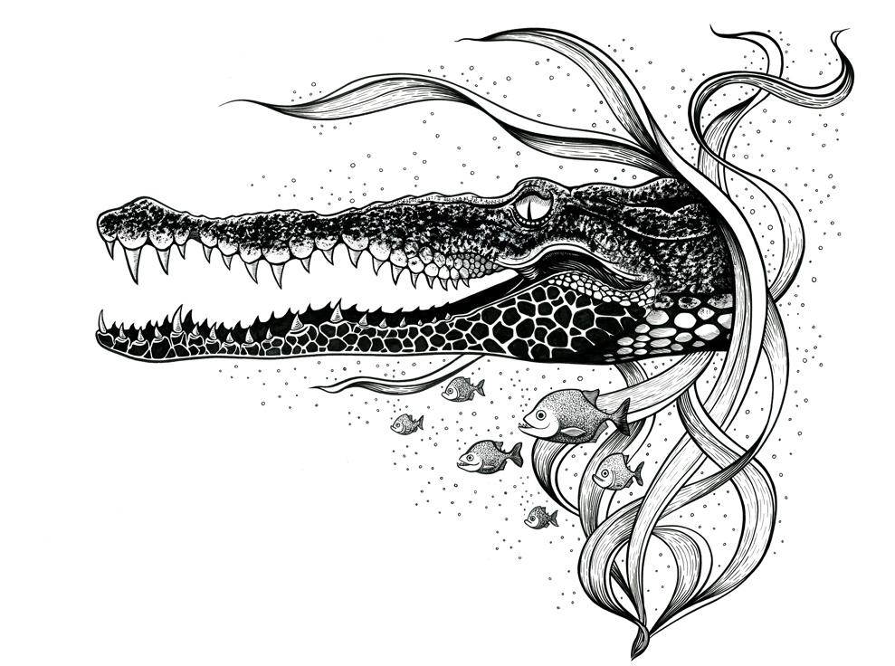 Tela-illustration-print-coccodrillo copia